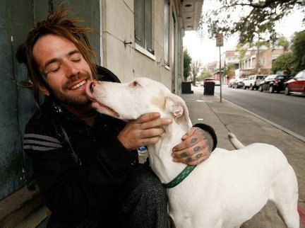 Demystifying Why Dogs Are Happy to See You image