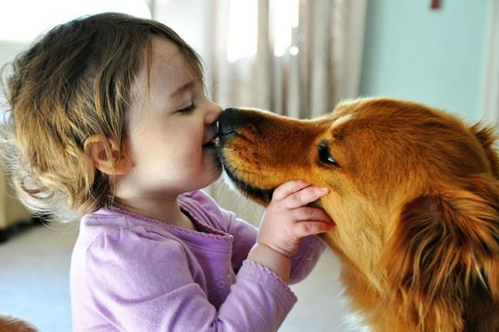 are those dog kisses healthy image