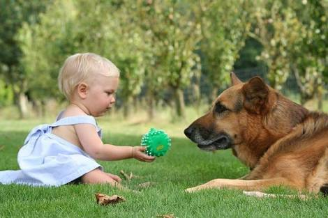 Can Dogs Prevent Asthma in Children?